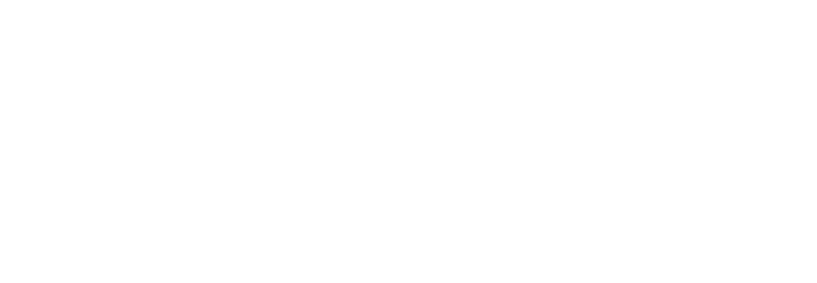 Audi — Digital Partner